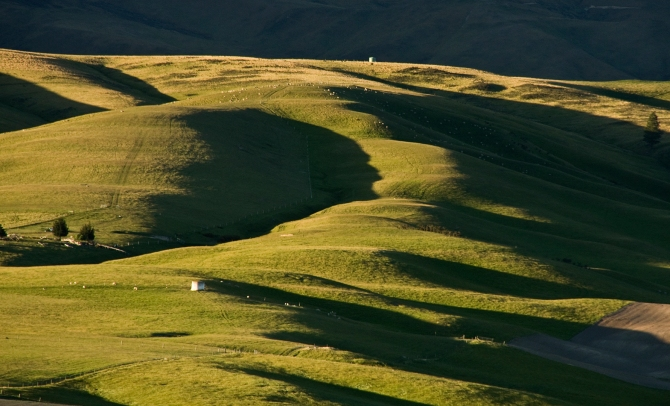 Evening Shadows on Giddings Downs