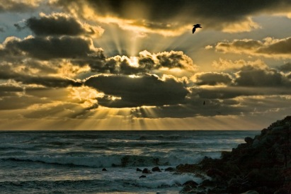 Sunburst at Cobden Beach