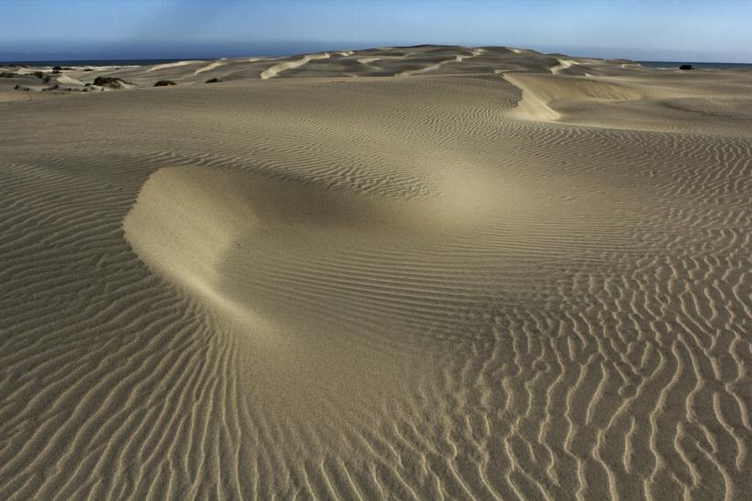 Farewell Spit Sand Patterns