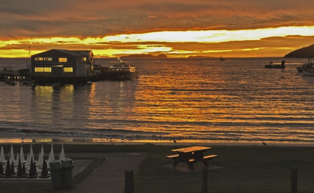 DC9804 Halfmoon Bay Sunrise
